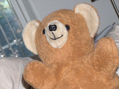 FBI: Child porn suspect likes stuffed animal sex