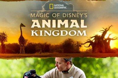 'Magic of Disney's Animal Kingdom' docuseries coming to Disney+