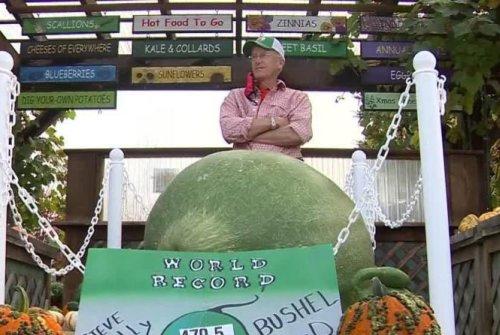 Massachusetts man grows record-breaking 470.5-pound gourd