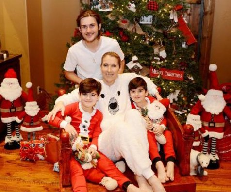 Celine Dion posts photo of first Christmas without Rene Angelil