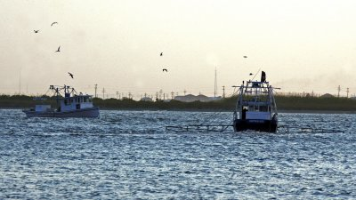 Louisiana pushes for more oil drilling
