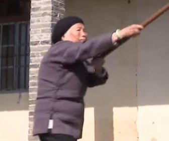China's 'Kung Fu Grandma' still teaching martial arts at 93