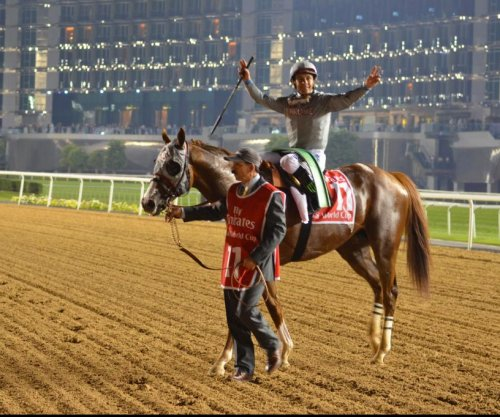 California Chrome romps in Dubai World Cup