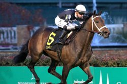UPI Horse Racing Preview: 2-year-old races, awards ceremonies key weekend racing
