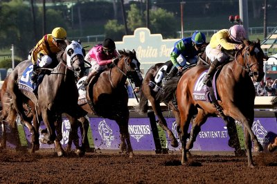 Governor gives California Horse Racing Board power to suspend licenses