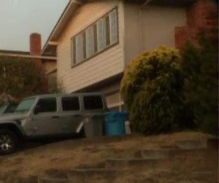 Mountain lion crashes through window into California home