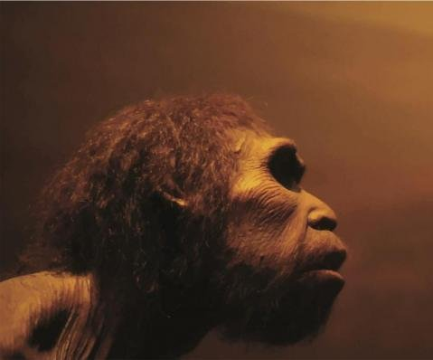 Humans and Neanderthals interbred 100,000 years ago