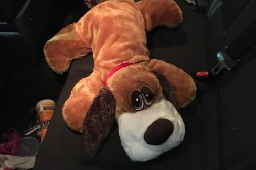 Border Patrol finds 2 pounds of meth in stuffed toy dog