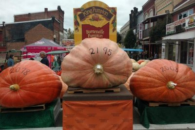 Ohio farmer's pumpkin breaks state record at 2,195 pounds