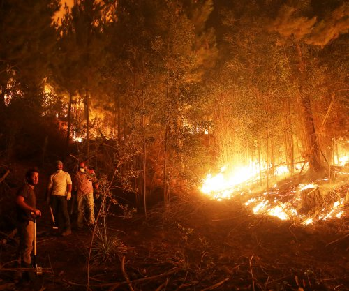 Chile wildfire burns down 40 homes, 8,600 acres