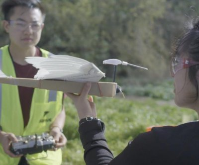 Stanford researchers' PigeonBot provides insight into mechanics of bird wings