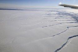 Seals help scientists survey Antarctica's disappearing glaciers