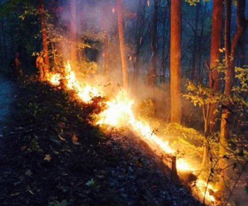 Southern wildfires rage; poor visibility leads to truck driver's death
