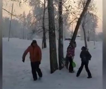 Prankster kicks tree to cover kids in surprising amount of snow