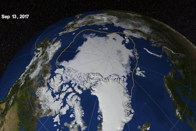 Natural climate variability explains almost half of Arctic sea ice loss