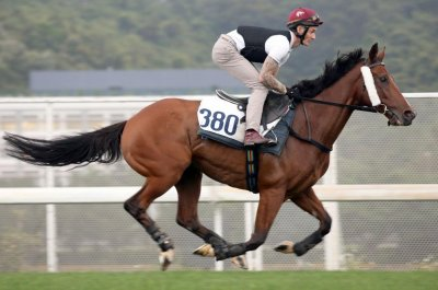 Three Group 1 races in Hong Kong highlight weekend horse racing