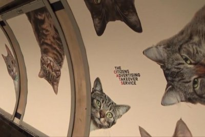 London subway station ads replaced with pictures of cats