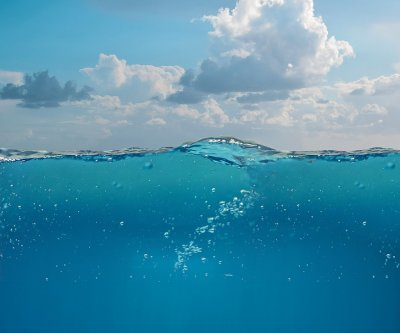 Ocean's 'biological pump' absorbs more carbon than previously estimated