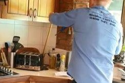Venomous snake found hiding behind family's toaster