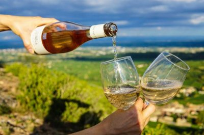 Company seeks 'wine taster' to make over $300 drinking wine