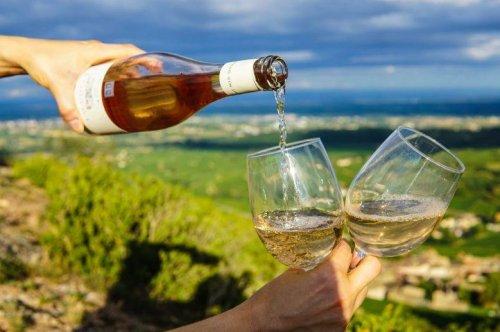 Company seeks 'wine taster' to make over $300 drinking wine