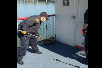 Bobcat captured aboard Pittsburgh sight-seeing boat