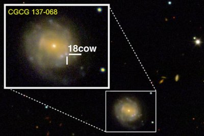 Collapsing star spotted turning into black hole or neutron star for the first time