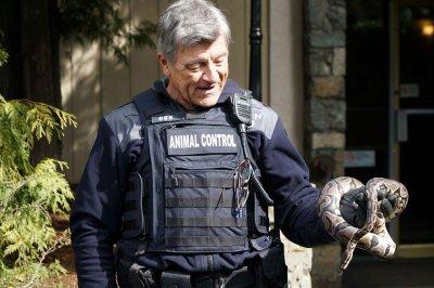 Escaped python found in vacant British Columbia apartment