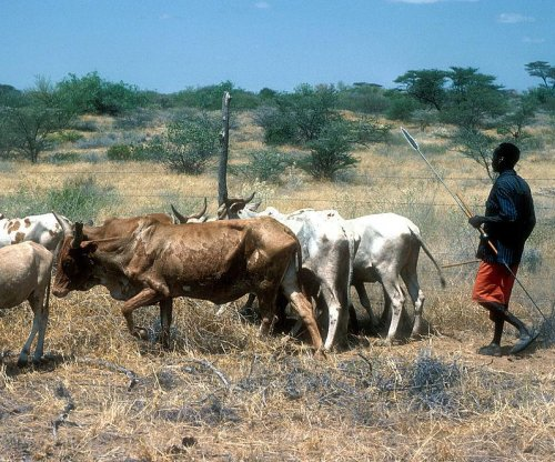Health of humans and livestock linked in Kenya