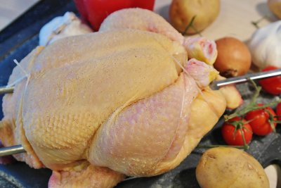 E. coli strain in poultry may cause infections in humans, study says