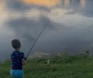 Alligator steals 7-year-old angler's fish and pole