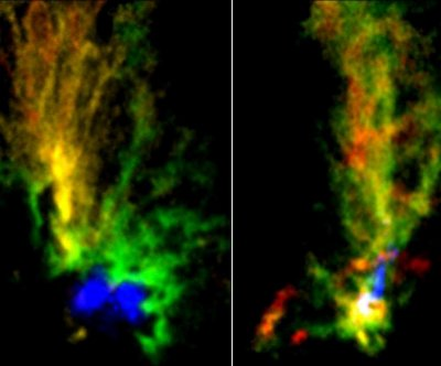 Collisions between magellanic clouds could spur giant star formation