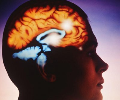 Electrical brain stimulation doesn't boost memory: Study