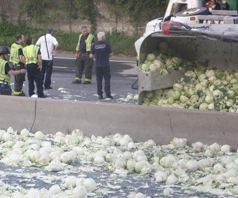 Overturned truck covers interstate in heads of cabbage