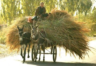 Hu returns home as Urumqi tensions resume