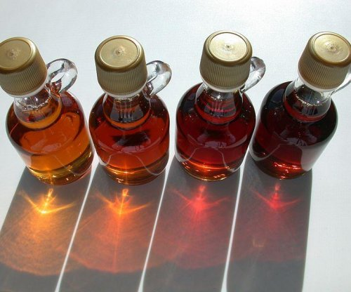 Maple syrup extract may boost effectiveness of antibiotics