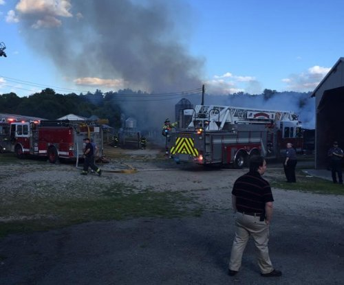 7,000 young turkeys die in Massachusetts barn fire