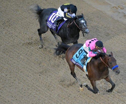 Kentucky Derby preps take on international flavor