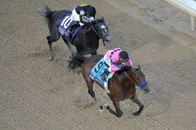 Kentucky Derby preps take on international flavor