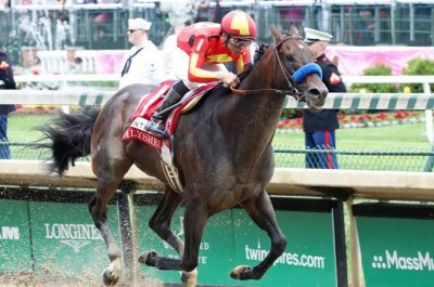 Eight Grade I races Saturday at Belmont Park include many of best in U.S.