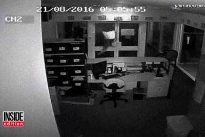 Police probe video of vandals setting crocodiles loose in school office