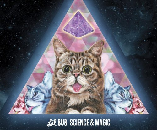 Internet sensation Lil Bub cat to release first album 'Science & Magic'