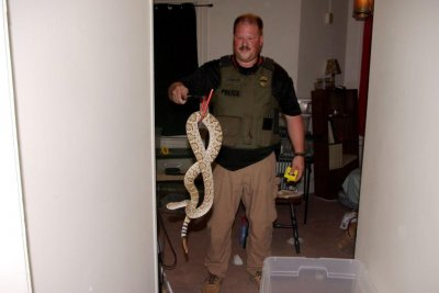 Former zoo worker charged after taking venomous snakes home