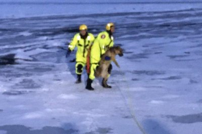 Firefighters rescue dog that fell through ice on the Minnesota River