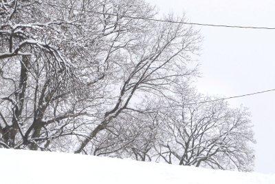 Woman helps Toledo mayor after snowstorm heart attack