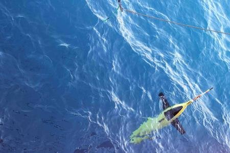 Robotic underwater gliders observe melting Antarctic ice sheets