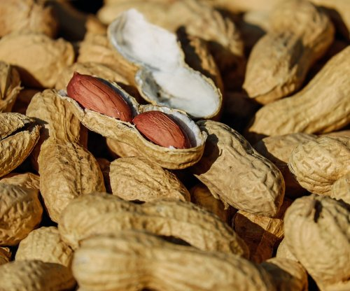 Vaccine against peanut allergy works in trial with mice
