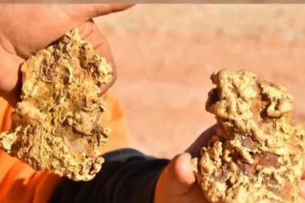 Watch: Australian gold hunters find two nuggets weighing 7 ...
