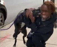 Dog reunited with family after 11 months on the loose in Chicago