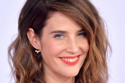 Cobie Smulders, Sebastian Stan field 'Avengers' theories